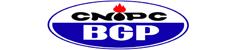 BGP Bolivia S.R.L.