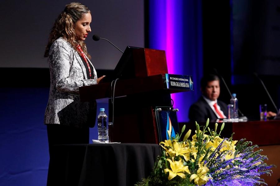 Conclusiones del IX Congreso Internacional Bolivia Gas & Energía 2016
