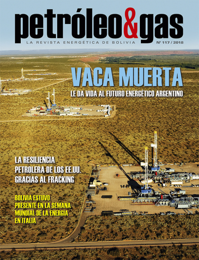 Revista Petróleo & Gas No. 117